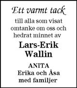 Lars-Erik Wallin